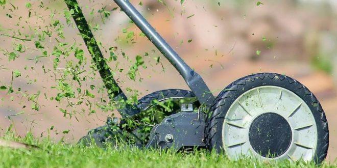 Rasen maehen 660x330 - Wie die Profis einen Rasen anlegen